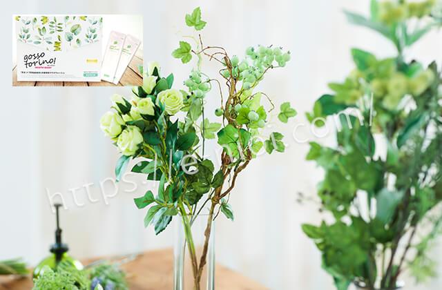 ッソトリノ10種類植物成分エキス